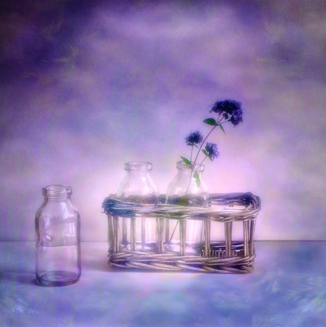 Three little Bottles by Dianne Owen