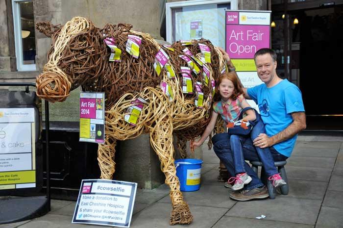 Cow Selfie fundraiser