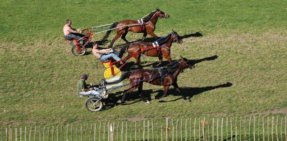 Trotting at Appleby Horse Fair