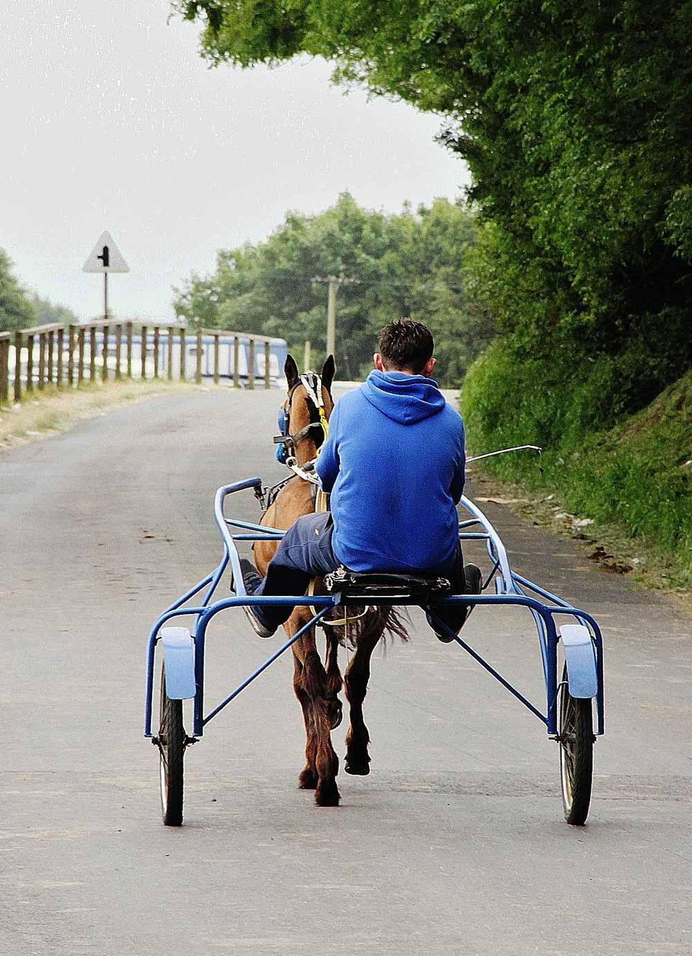 Adrian Ashurst - Appleby Horse Fair