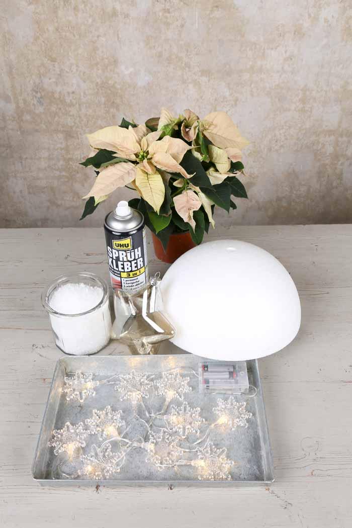 Poinsettia Snowball