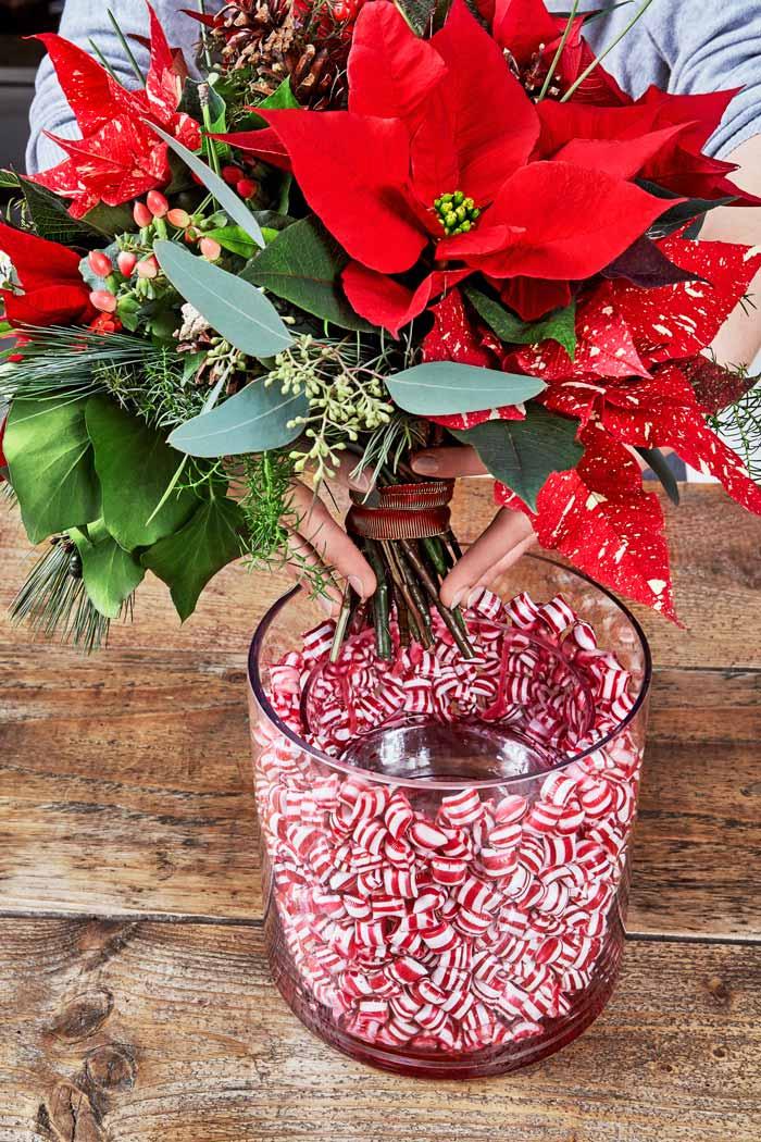 Poinsettia Sweet Treats