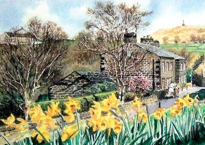Daffodils at Lumbutts