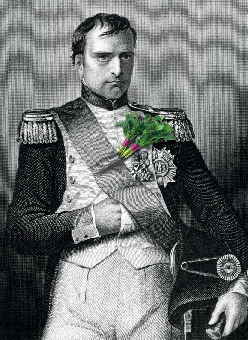 napoleon watercress