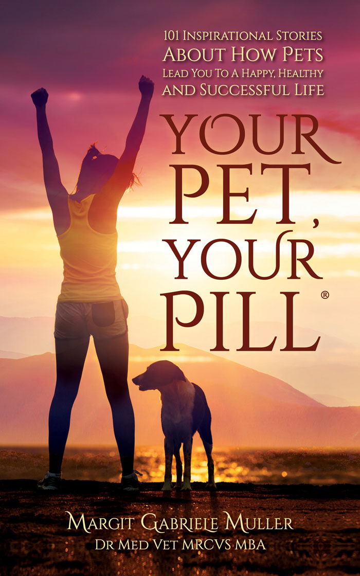 How pets relieve stress